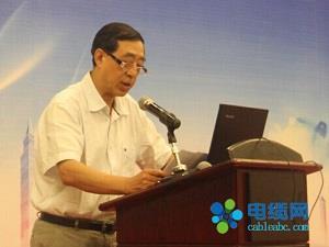 杨启明对中国电线电缆行业发展提3大建议