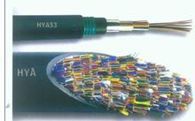 天联——HYA53/HYAT53(防鼠咬/直埋)