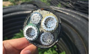YJV 3x2.5+1 铜芯电力电缆 电线电缆厂家批发