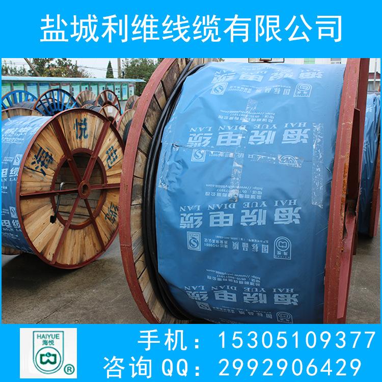 ZR-YJV22 3*10+1*6平方阻燃铠装电力 国标电缆工业电缆
