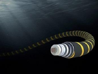 巴拉圭获准优先接入阿根廷的海底光缆