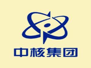 中核集团制定的通用核仪器领域首个国际标准正式发布