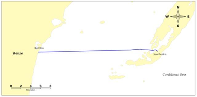 华为海洋已交付战略演化水下互联项目