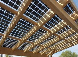印度政府将取消不投标屋顶太阳能机构补贴资格