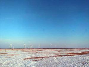 中国风电叶片首次进入俄罗斯风电市场
