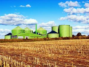 福州电厂燃煤耦合生物质发电技改项目被列入全国首批名单