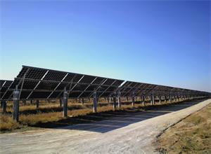 Jolywood将为荷兰太阳能发电厂提供光伏组件