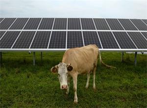俄罗斯开始向欧洲出口太阳能电池板