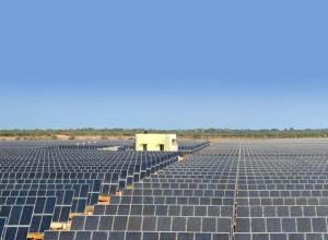 Solarcentury成功建成荷兰44MW太阳能公园