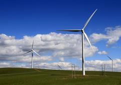 山东电网单日风电出力再创新高