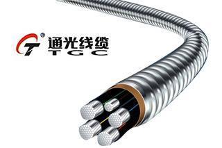 通光线缆子公司预中标9392万元国家电网项目