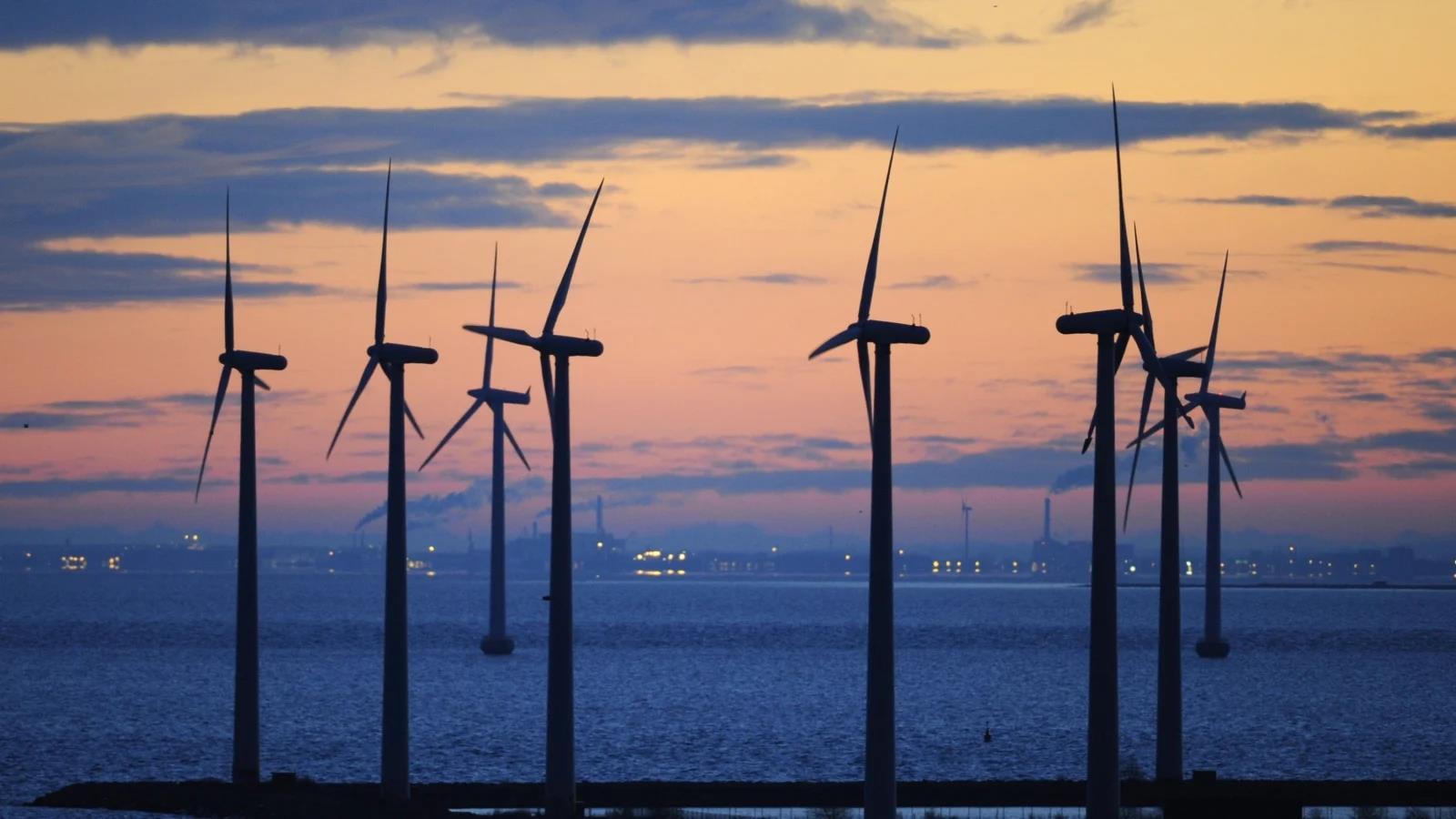 2019年丹麦风电创新纪录 占近半电力供应