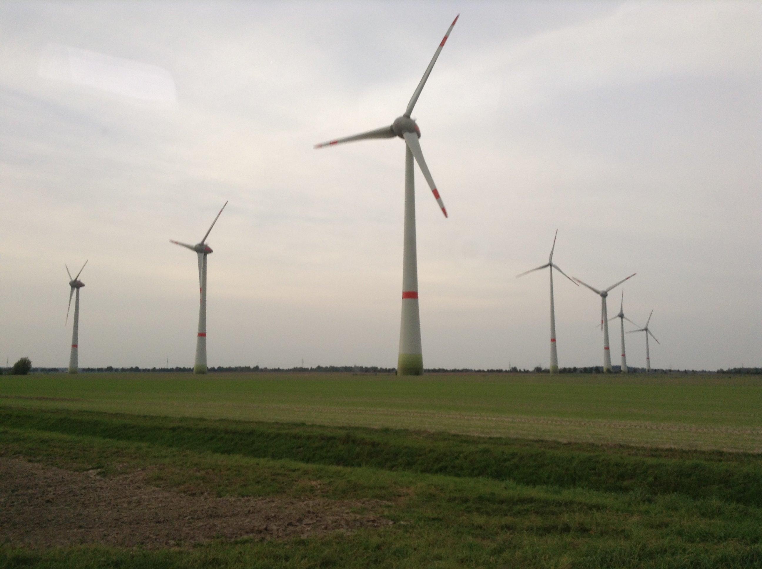 印度400兆瓦可再生能源招标被超额认购
