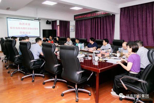杭州临安区经信局局长沈文奎一行参访远东
