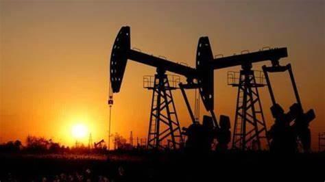 俄罗斯:2020年全球石油需求或减少900-1000万桶/日
