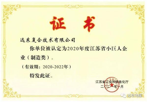 喜讯!远东复合技术获评江苏省小巨人企业