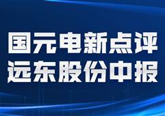 【國元電新】遠東股份中報點評:新能源業務大幅增長,業績符合預期
