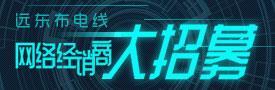远东布电线网络经销商大招募