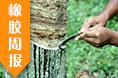 电缆原材料(橡胶)周报(1.8-1.12)